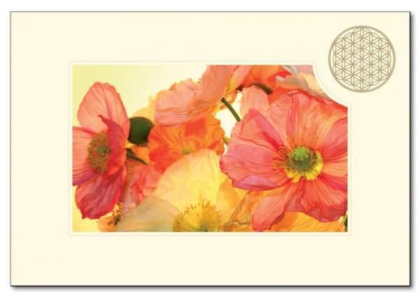 "Klappkarte BdL ""Mohnblume orange"" 11,5x16,7cm (mit Kuvert B6)"